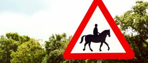 Driving Safely around Horses