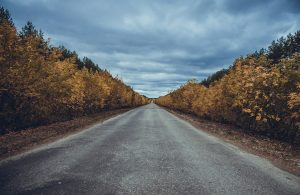 Driving in the autumn